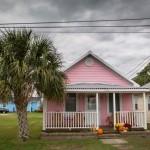 Camera Club - Pink House