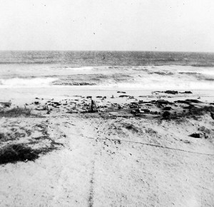 Hardpan showing after Hurricane Hazel, 1954.